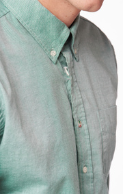 SHIRT ORGANIC OXFORD TAILORED FIT